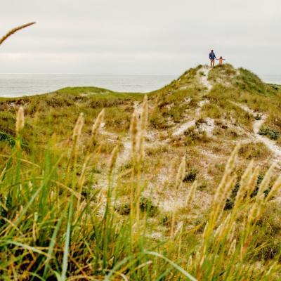 The Dunes at Henne Strand in West Jutland, Denmark